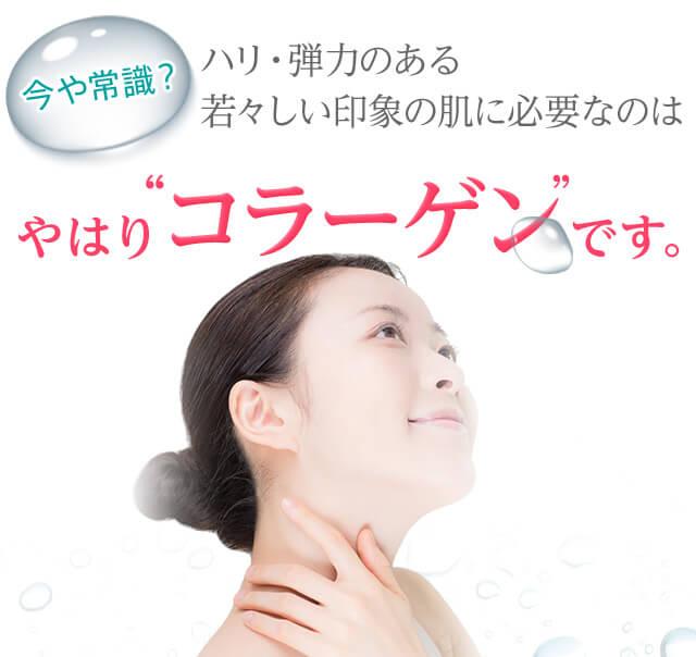 ニッピ独自の生コラーゲンは肌と同じコラーゲン