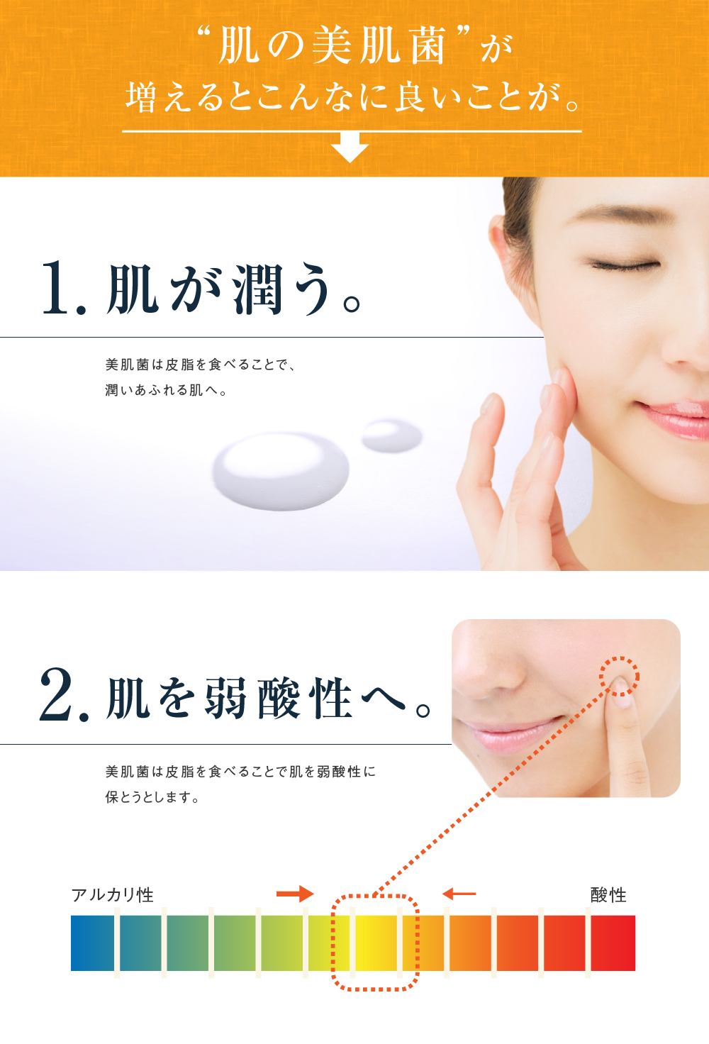 """""""肌の美肌菌""""が増えるとこんなに良いことが。肌が潤う。肌を弱酸性へ。"""