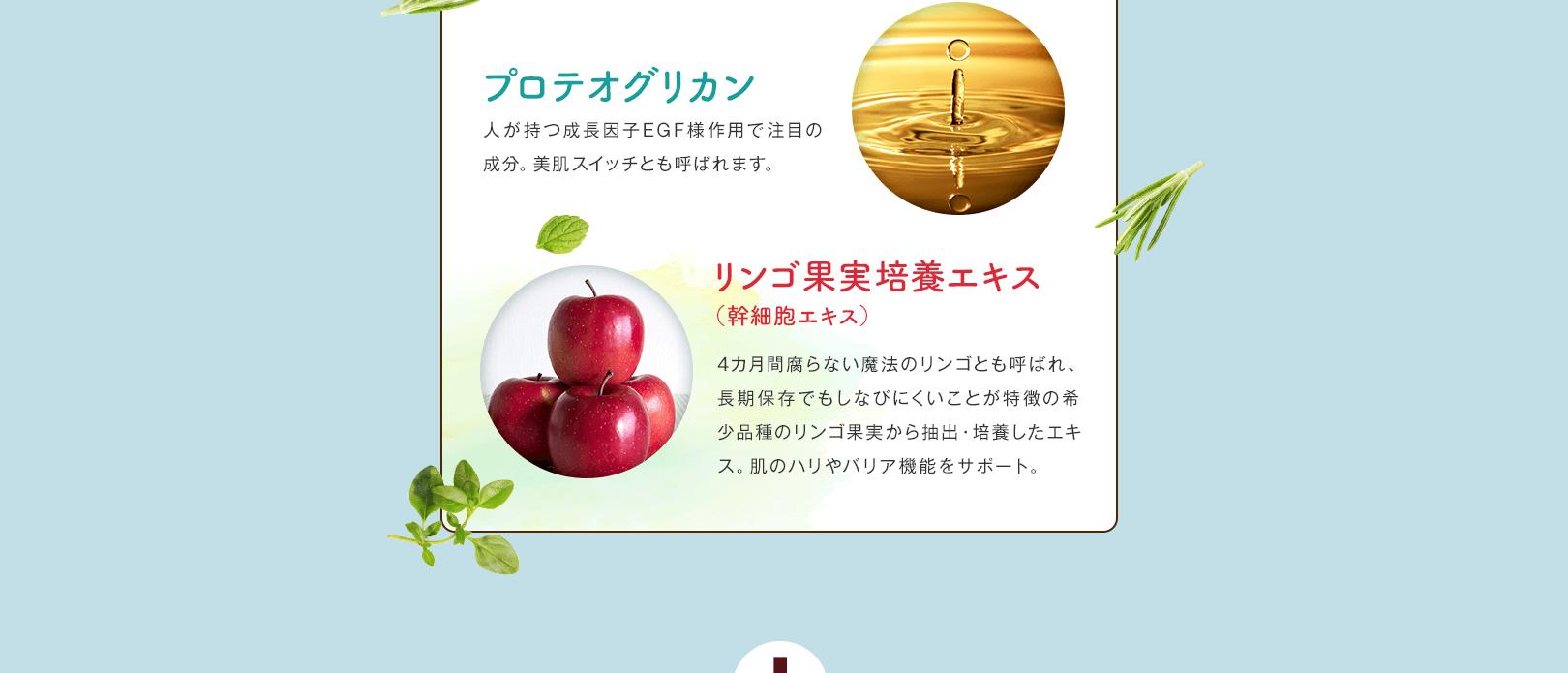 リンゴ果実培養エキス(幹細胞エキス)