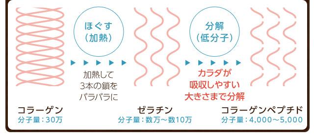 ニッピのコラーゲンペプチド分解方法