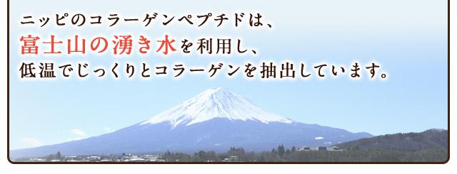 ニッピのコラーゲンペプチドは、富士山の湧き水を利用し、低温でじっくりとコラーゲンを抽出しています。