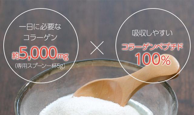 一日に必要な コラーゲン 約5,000mg (専用スプーン一杯5g)