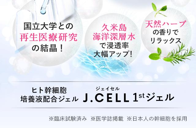 ヒト幹細胞 培養液配合ジェル