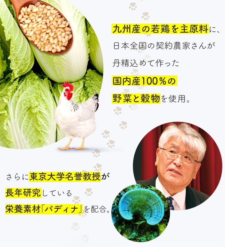 九州産の若鶏を主原料に