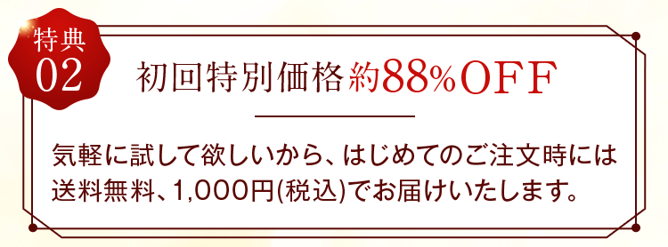 初回特別価格 約88%OFF
