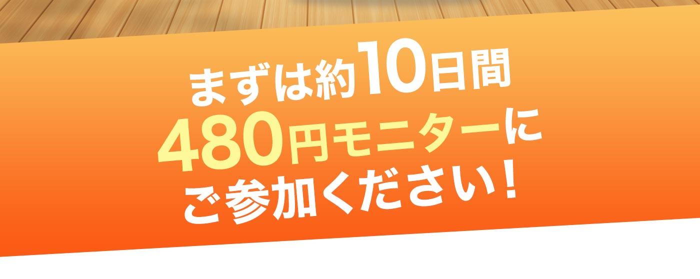 まずは約10日間 480円モニターに ご参加ください!