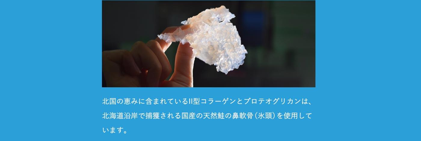 北国の恵みに含まれているII型コラーゲンとプロテオグリカンは、北海道沿岸で捕獲される国産の天然鮭の鼻軟骨(氷頭)を使用しています。