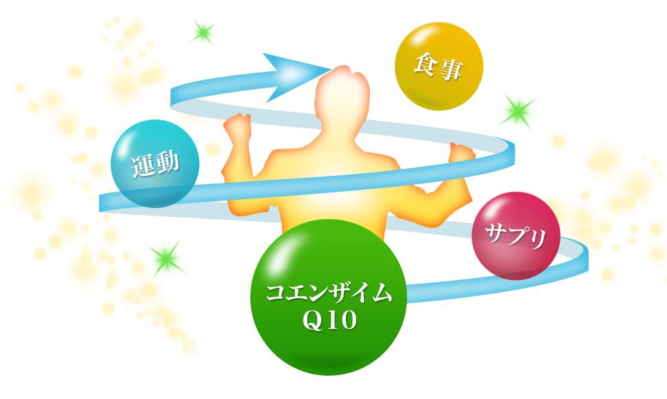 コエンザイムQ10、食事、運動、サプリ