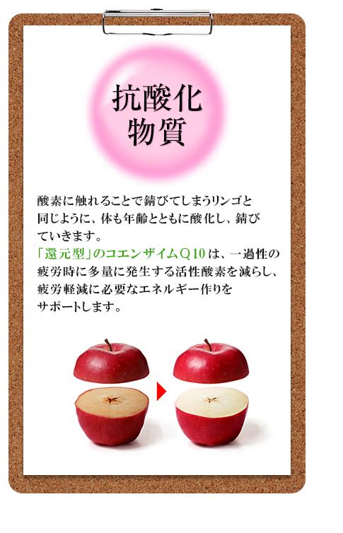 抗酸化作用:リンゴを切ってそのままにしておくと酸化して、切り口が茶色になるように、私たちのカラダの中でも同じことがおきているのです。健康成分として今大変注目をされている「コエンザイムQ10」はカラダの酸化(サビ)を防ぐことで、若々しい日々を応援します。