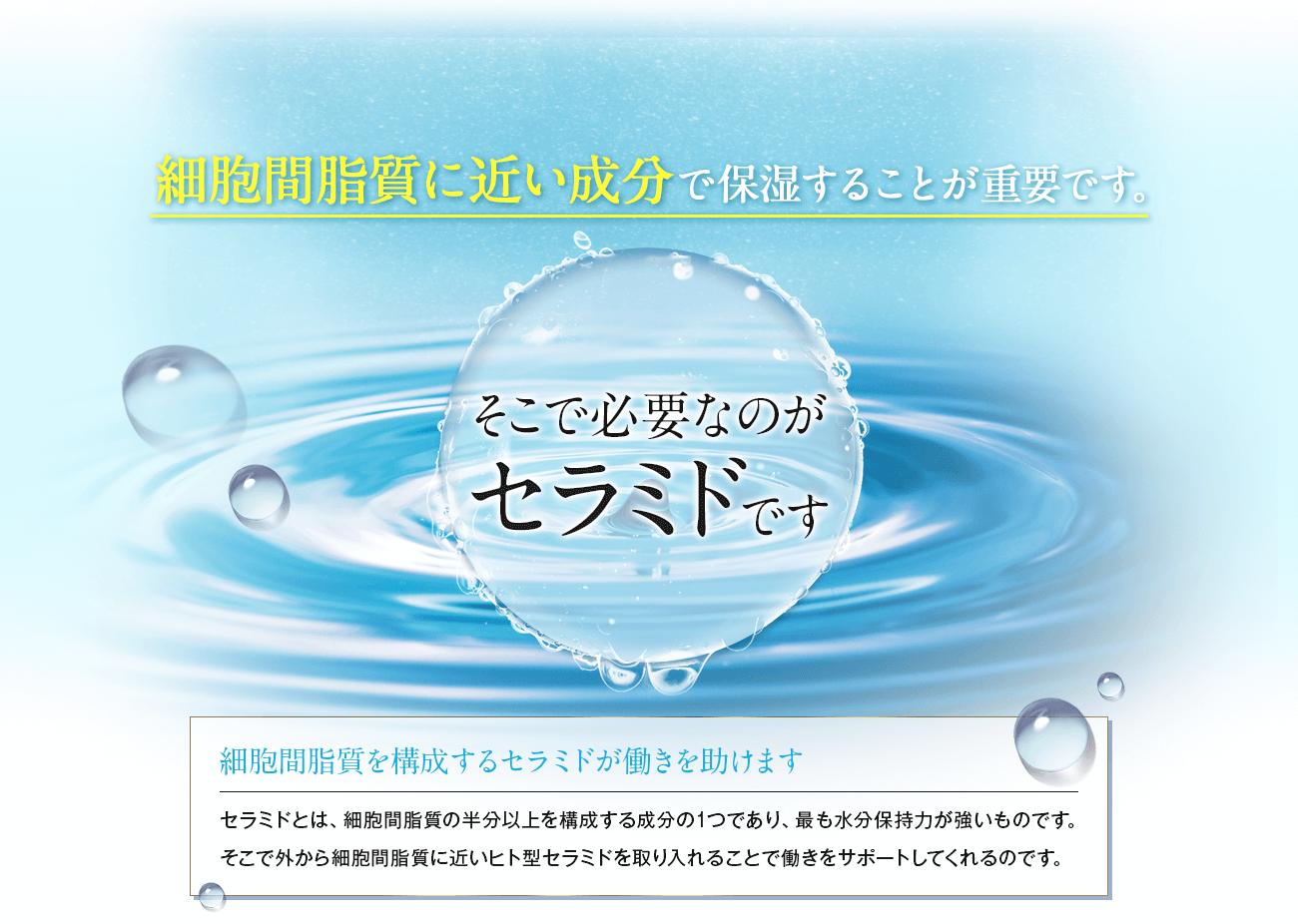 細胞間脂質に近い成分で保湿することが重要です