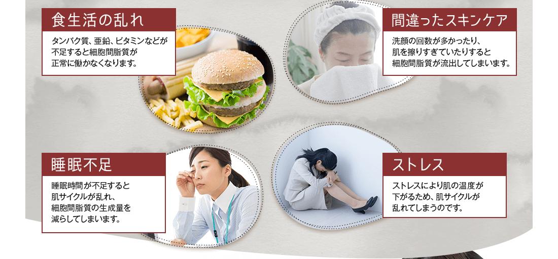 食生活の乱れ・間違ったスキンケア・睡眠不足・ストレスなどが細胞間脂質の働きを低下させます