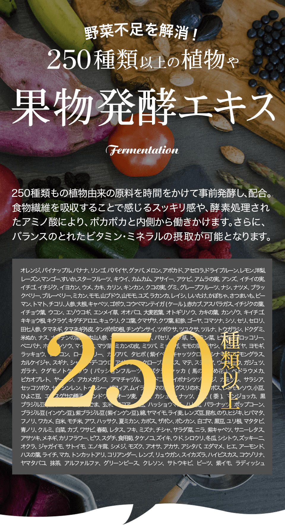 野菜不足を解消! 250種類以上の植物や果物発酵エキス