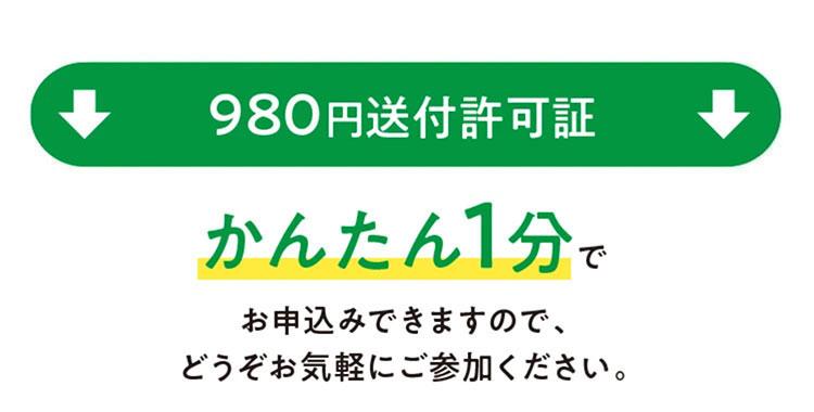 980円モニター送付許可証