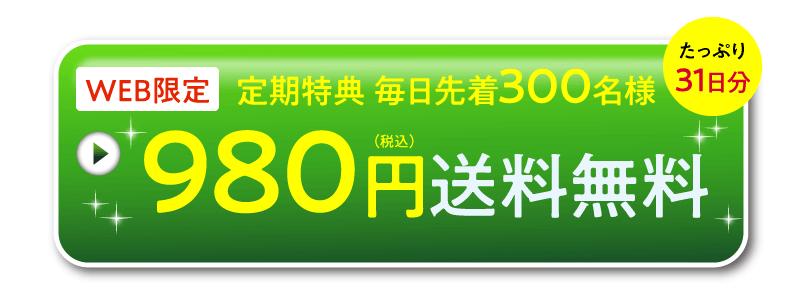 980円モニターに送料無料で参加する
