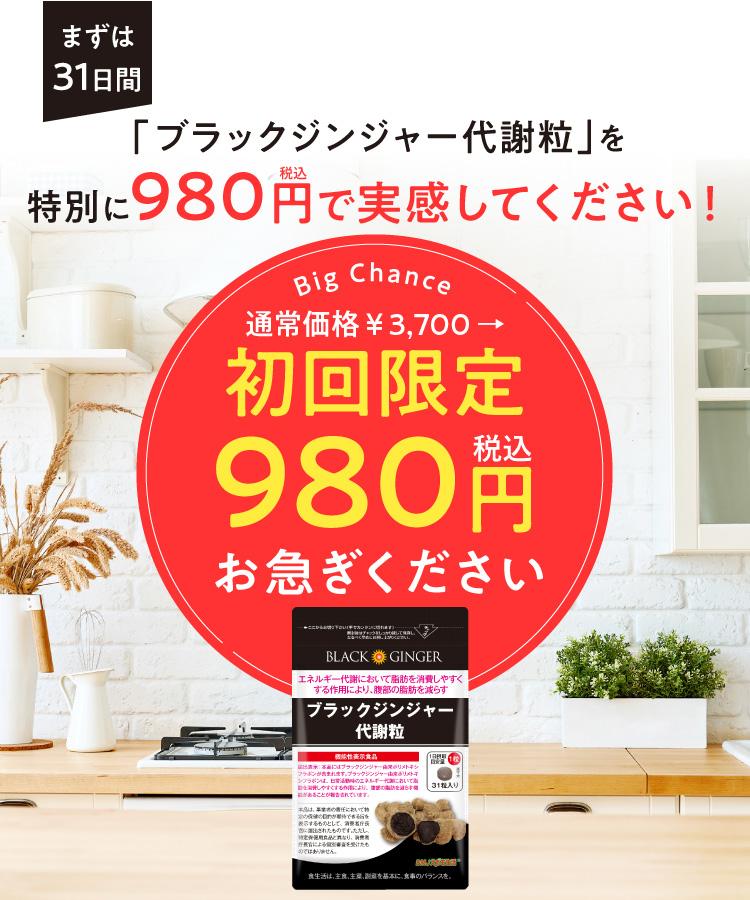980円モニター大募集