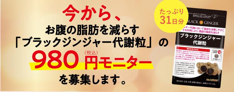 人気No.1 支持率No.1 おすすめNo.1