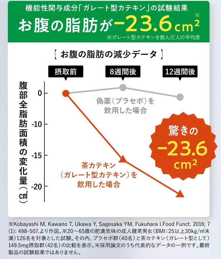 お腹の脂肪が-23.6平方センチメートル