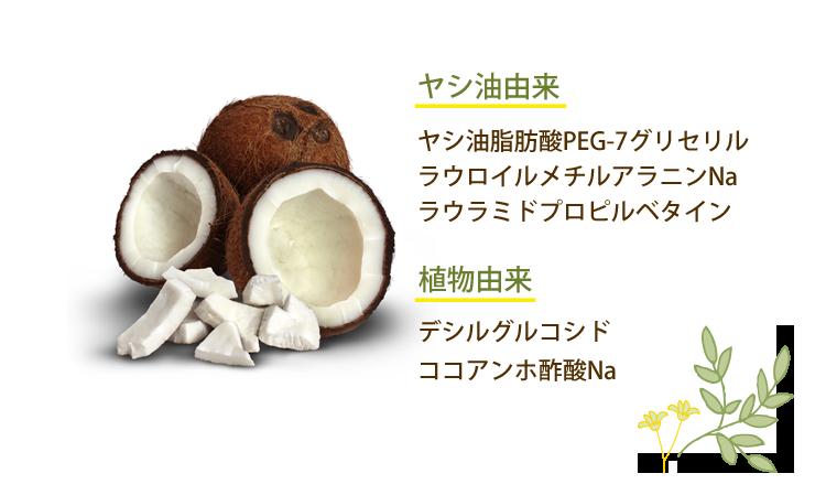 ヤシ油由来 ヤシ油脂肪酸PEG-7グリセリル ラウロイルメチルアラニンNa ラウラミドプロピルベタイン 植物由来 デシルグルコシド ココアンホ酢酸Na