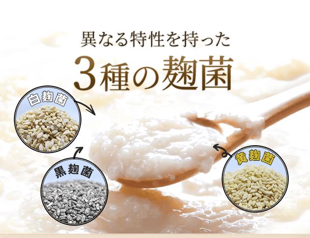 異なる特性を持った3種の麹菌