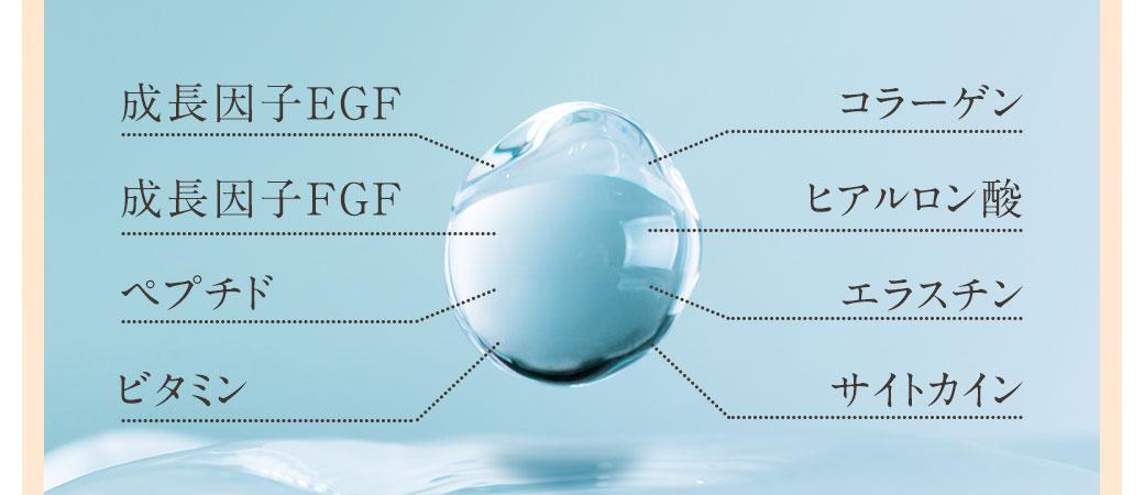 成長因子EGF