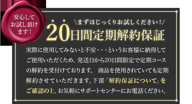 20日間解約保証中!
