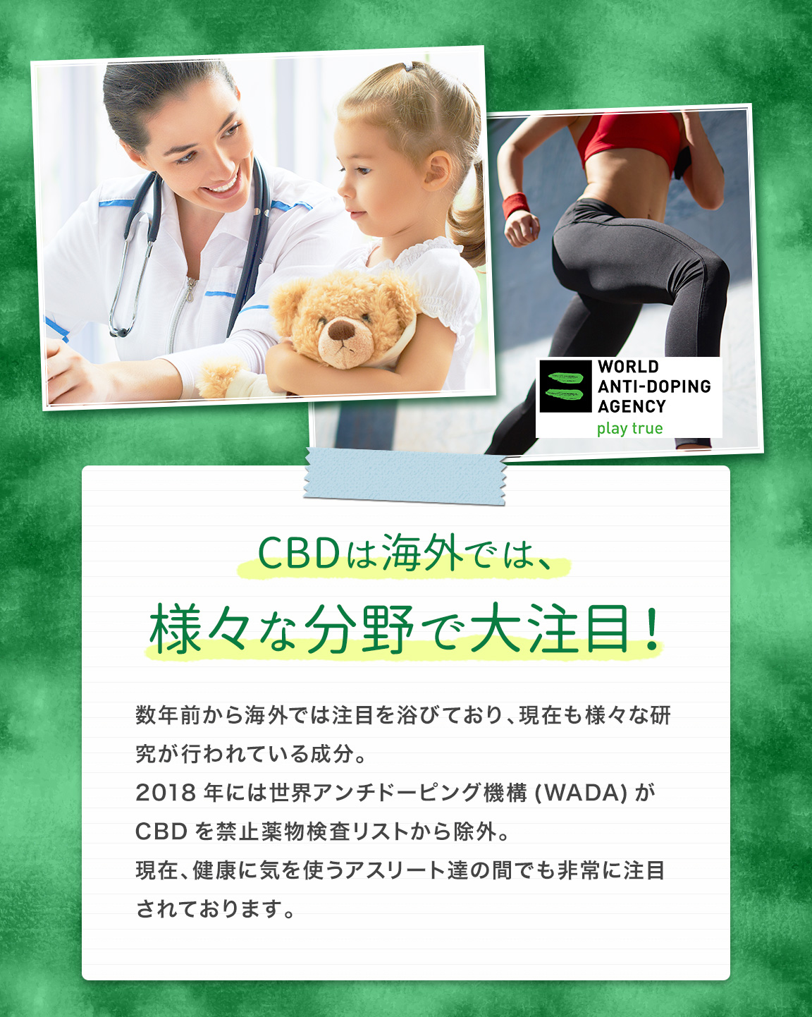 CBDは海外では、様々な分野で大注目!