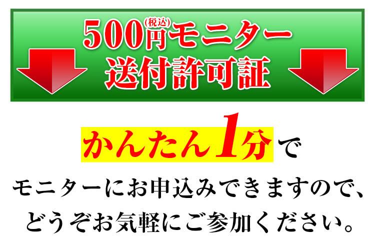 500円モニター送付許可証