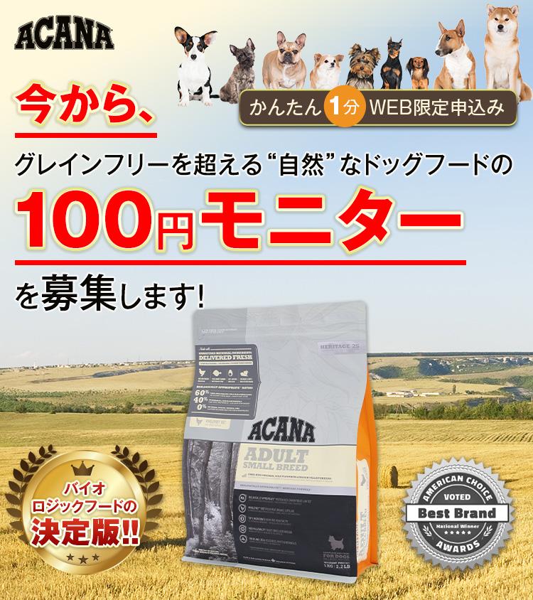 今から、愛犬を正しく健康へ導く、こだわりドッグフードの100円モニターを募集します!