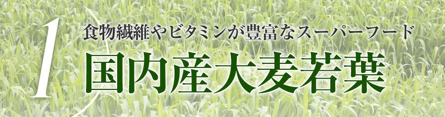 国内産大麦若葉