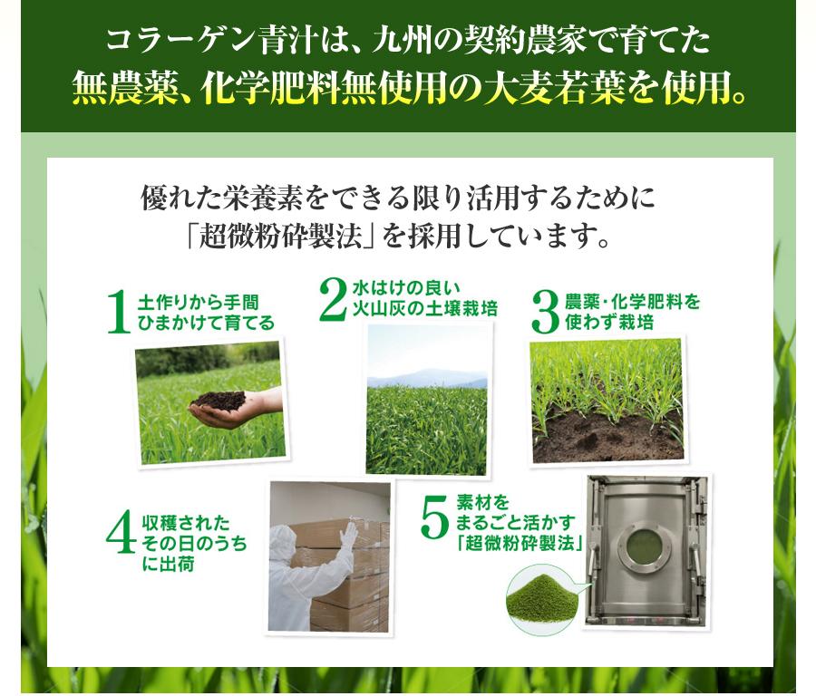 コラーゲン青汁は、九州の契約農家で育てた無農薬、化学肥料無使用の大麦若葉を使用。