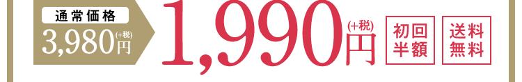 通常価格3,980円(+税)→1,990円(+税) 初回半額 送料無料
