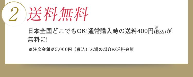 2)送料無料 日本全国どこでもOK!通常購入時の送料400円(税込)が無料に! ※注文金額が5,000円(税込)未満の場合の送料金額