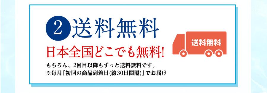 2 送料無料 日本全国どこでも無料!