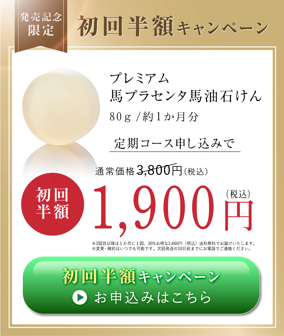 初回限定50%オフ1900円税込み
