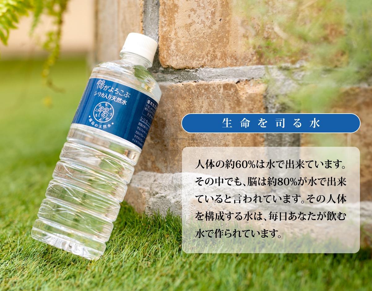 生命を司る水