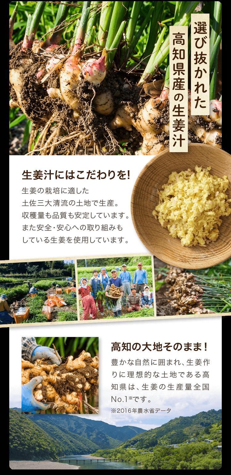 高知県産の生姜汁