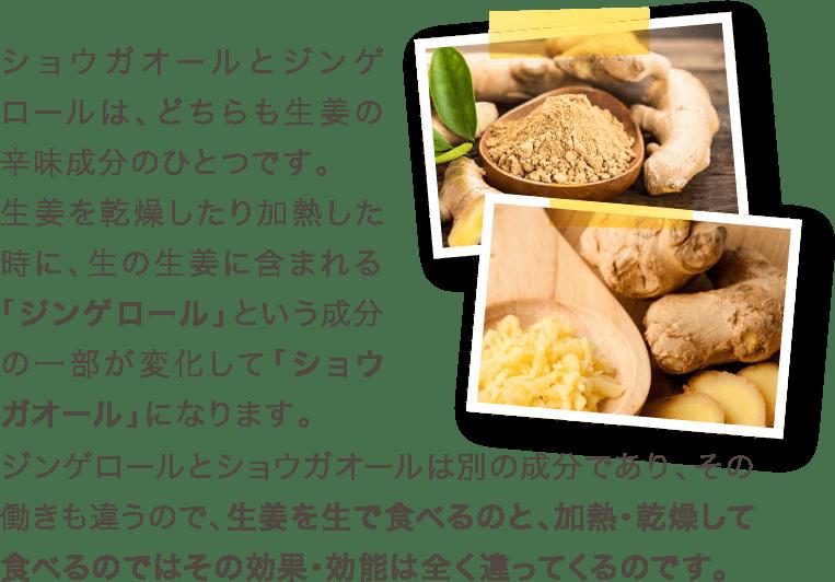 生姜を生で食べるのと、加熱・乾燥して食べるのではその効果・効能は全く違ってくるのです。