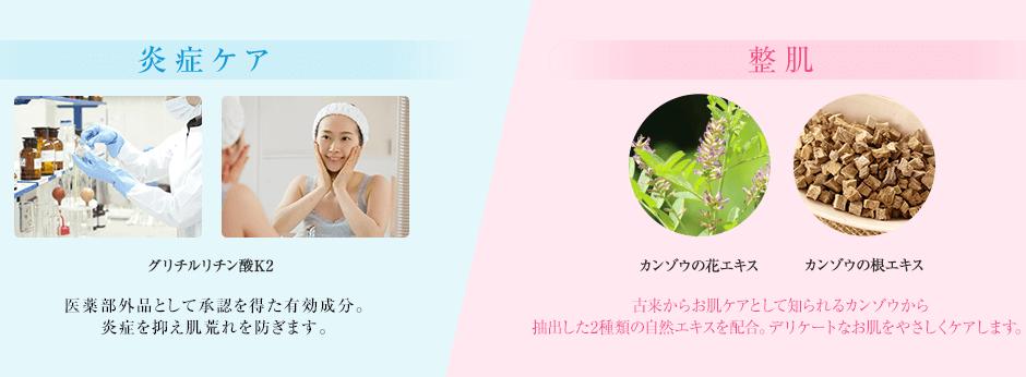 炎症ケア:カンゾウの花エキス カンゾウの根エキス 古くから炎症ケアとして知られる甘草から抽出したWカンゾウを配合 美白:牡丹エキス カッコンエキス プルーン酵素エキス プラセンタ 4種類の自然の恵みがそれぞれの作用で色素沈着から守ります。
