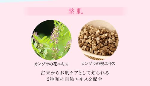 保湿:牡丹エキス カッコンエキス プルーン酵素エキス プラセンタ 4種類の自然の恵みがそれぞれの作用で色素沈着から守ります。