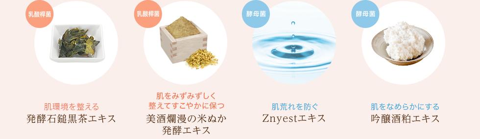 発酵石鎚黒茶エキス,美酒爛漫の米ぬか発酵エキス,Znyestエキス,吟醸酒粕エキス