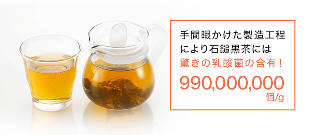手間暇かけた製造工程により石鎚黒茶には驚きの乳酸菌の含有!
