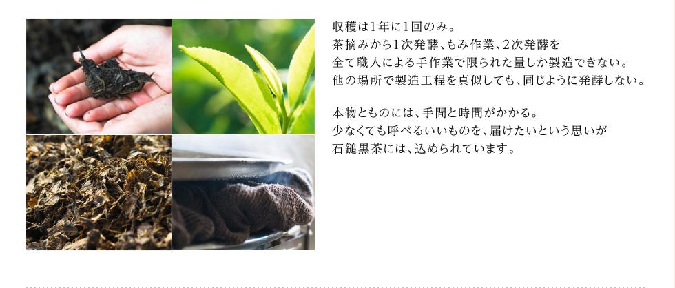 収穫は1年に1回のみ。茶摘みから1次発酵、もみ作業、2次発酵を全て職人による手作業で限られた量しか製造できない。他の場所で製造工程を真似しても、同じように発酵しない。本物とものには、手間と時間がかかる。少なくても呼べるいいものを、届けたいという思いが石鎚黒茶には、込められています。