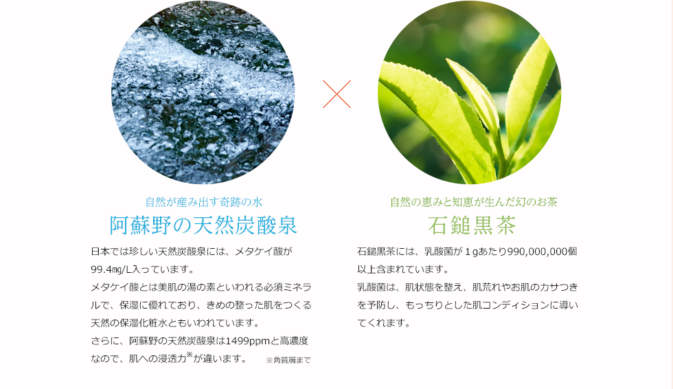 自然が産み出す奇跡の水 阿蘇野の天然炭酸泉 日本では珍しい天然炭酸泉には、メタケイ酸が99.4㎎/L入っています。メタケイ酸とは美肌の湯の素といわれる必須ミネラルで、保湿に優れており、きめ細かい肌をつくる天然の保湿化粧水ともいわれています。さらに、阿蘇野の天然炭酸泉は1499ppmと高濃度なので、肌への浸透力が違います。 自然の恵みと知恵が生んだ幻のお茶 石鎚黒茶 石鎚黒茶には、乳酸菌が1gあたり990,000,000個以上含まれています。乳酸菌は、肌状態を整え、肌荒れやお肌のカサつきを予防し、もっちりとした肌コンディションに導いてくれます。