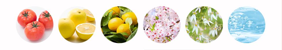 果実や花の画像