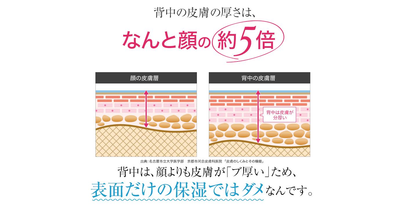 背中の皮膚の厚さはなんと顔の約5倍背中は、顔よりも皮膚が「ブ厚い」ため、表面だけの保湿ではダメなんです。