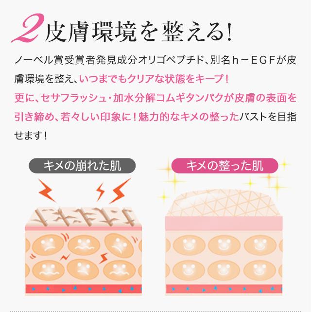 2皮膚環境を整える!