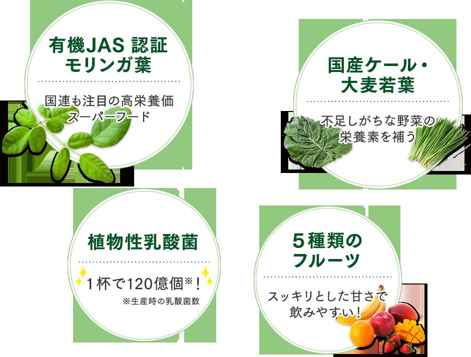 有機JAS 認証モリンガ葉 国産ケール・大麦若葉 植物性乳酸菌 5種類のフルーツ