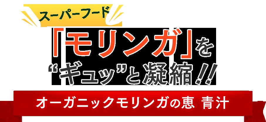 スーパーフード「モリンガ」をギュッと凝縮 オーガニックモリンガの恵 青汁